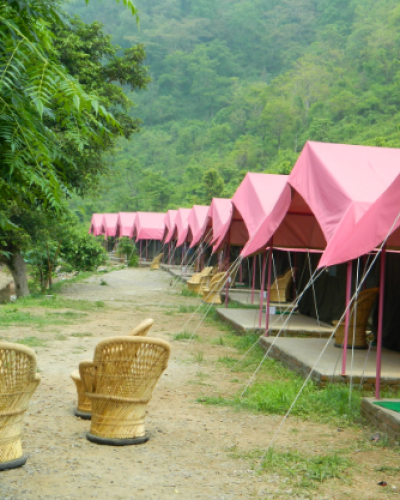 Camp-Majestic-Rishikesh